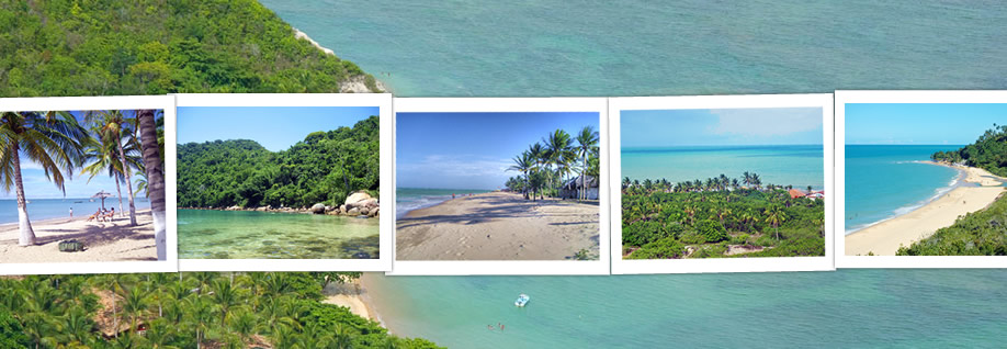 Brazil Beach Travel header