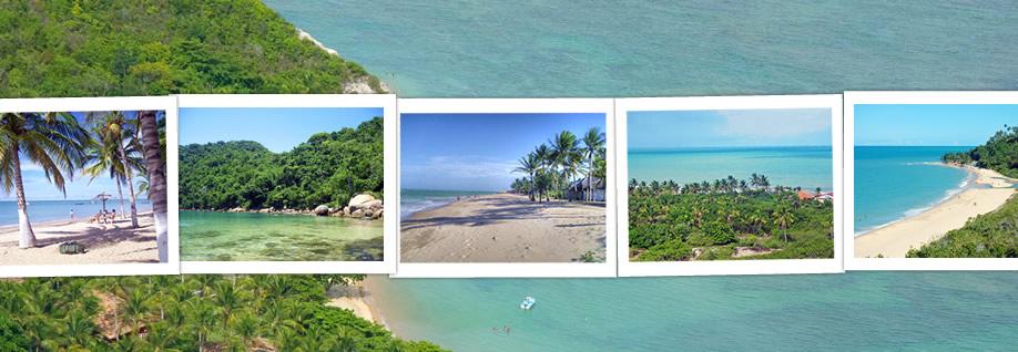 Brazil Beach Travel header